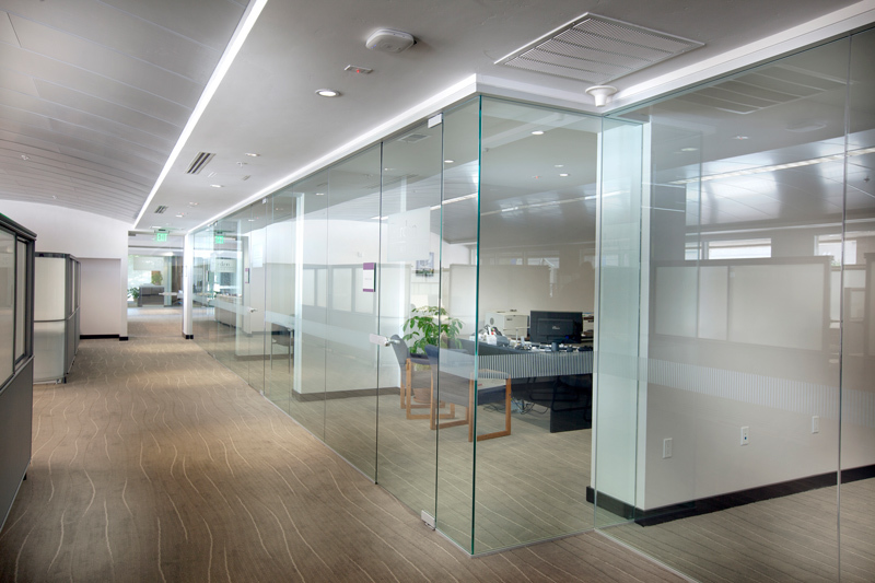 Glass office partitions within a modern office environment.